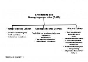 Mögliche Arten des Stretching zur Erweiterung des Bewegungsausmaßes